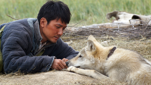 Chen Zhen and his Wolf (2)
